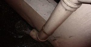 Water Damage And Sewage Backup